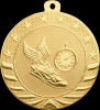 Click this Image to visit the Starbrite Medal Awards category.
